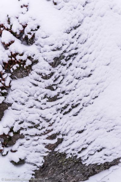 Nov.11_Utsjoki-6105814.jpg