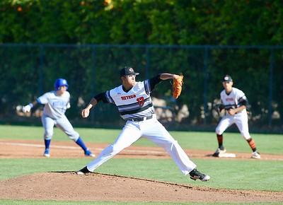 Baseball vs Dobson