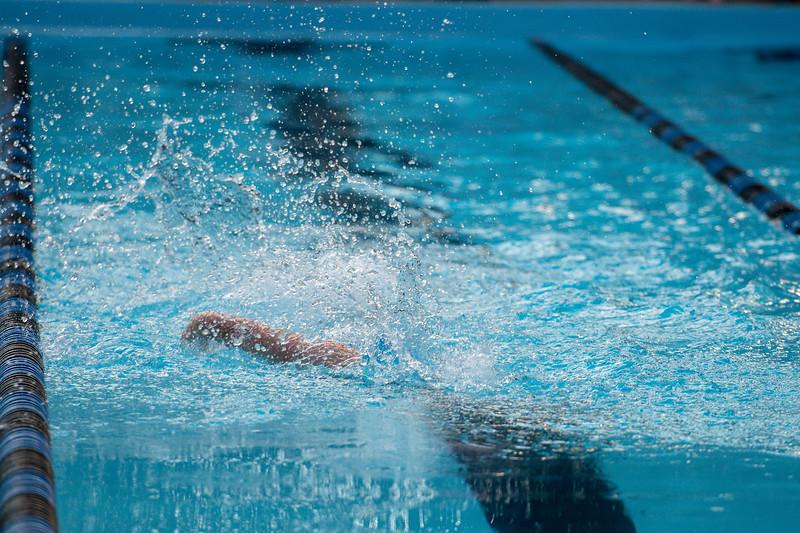 lcs_swimming_kevkramerphoto-685.jpg