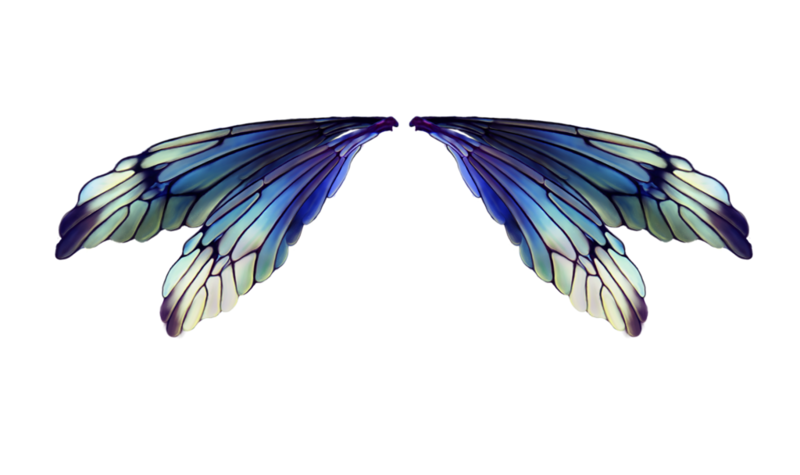 fairies_wings_by_lilifilane-d7348u2.png