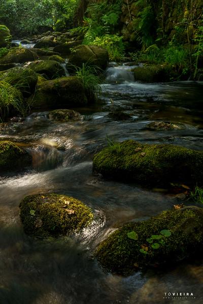 rio Gresso