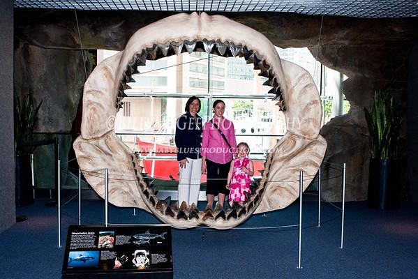 Baltimore National Aquarium - 22 May 09
