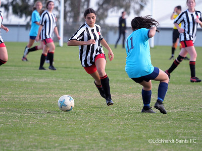 State Cup: WIL/1 v Shellharbour 30 June