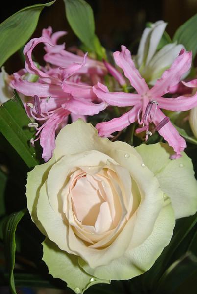 'RONNY & PASCAL' Bloemen voor Maintje 2012-11-11 15.JPG