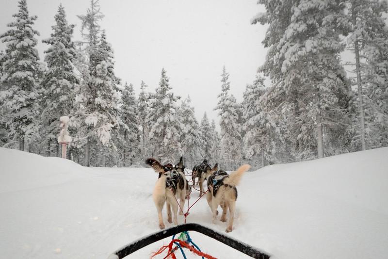 Finland_160116_32.jpg