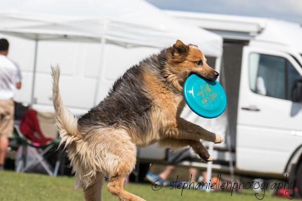 _MG_3248Up_dog_International_2016_StephaniellenPhotography.jpg