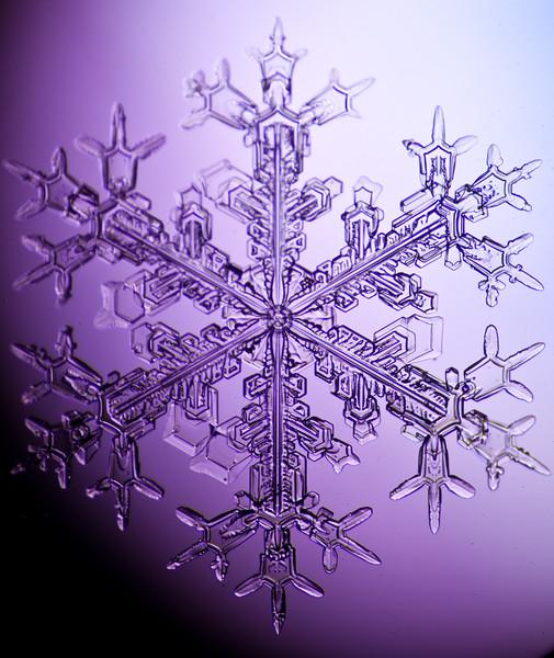 snowflake-3059-Edit.jpg