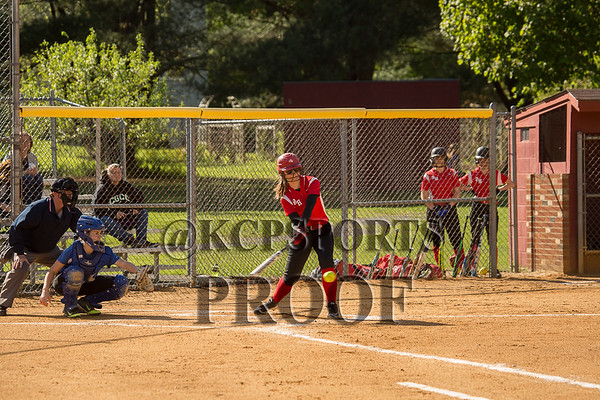 Red Hook Varsity and JV Softball 2017