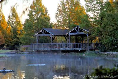 Clark Gardens Sunrise, 10-27-09