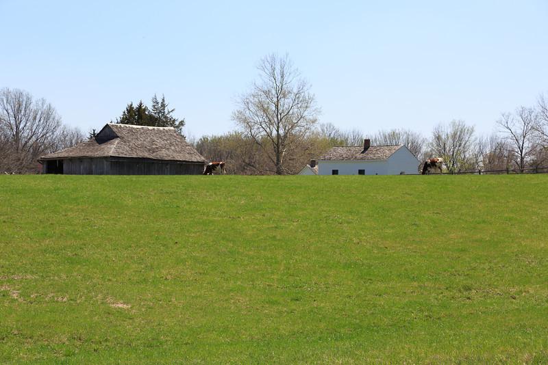 2014_04_18 Missouri Town 1855 011.jpg