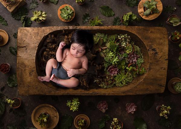 Nischay Newborn 2020