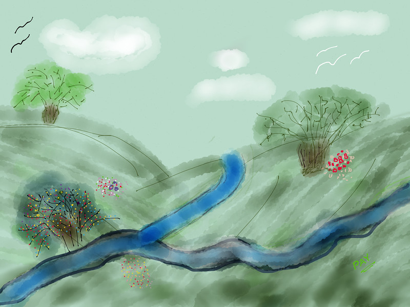 Meadow with River
