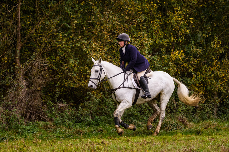Fitzwilliam Opening meet Nov 2019-202-137.jpg