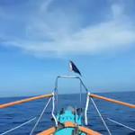 Atlantic Passage 2014 Videos