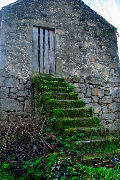 PR6 trilho medieval - 20091122 -  8991.jpg