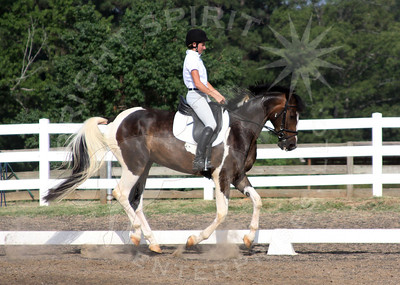 June 18, 2011 TSDS Schooling Show at Holly Hill