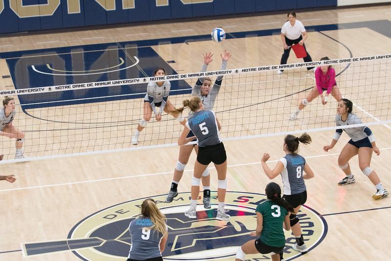 HPU Volleyball-92673.jpg