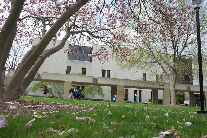 campus-2357April 15, 2013.jpg