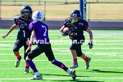 Youth Football: AYFL A7-Falcons vs. LLBYL A7-Jaguars 10.21.2017 (by Al Shipman)