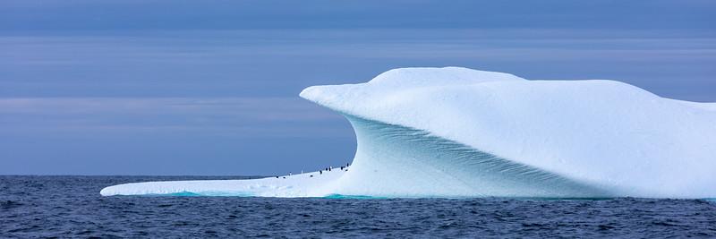 2019_01_Antarktis_02681.jpg
