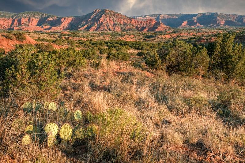Canyon Badlands