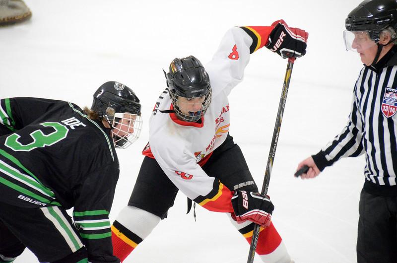 140111 Flames Hockey-009.JPG