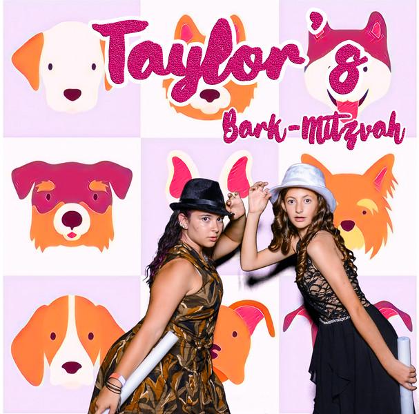 Taylors pawmitzvah-20840.jpg