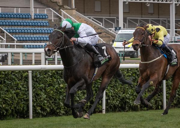 Race 5 - Royal Commando