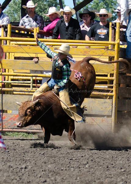 Bulls Saturday 2011