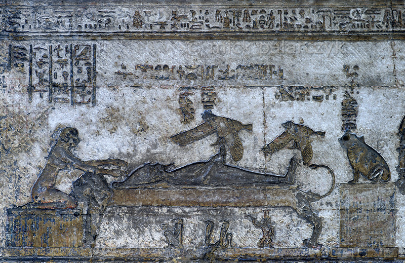 [EGYPT 29619] 'Mummified Osiris at Dendera.'  A relief in the northernmost of the western Osiris chapels on the roof of the Hathor Temple at Dendera shows a mummified Osiris lying on a funeral bed. His wife Isis, in the form of a kite, hovers above his erect phallus, ready to be impregnated. It is from this posthumous union that Horus, son of Isis, is born. To the right, sitting on a pedestal, we see Hekat, Goddess of Childbirth, in the form of a frog. On the left is Hathor, her arms outstretched towards Osiris. The chapel was used during the Osiris Festival in the month khoiak, which celebrated the resurrection of Osiris. This part of the Dendera Temple was built during the later Ptolemaic period (first century BC). Photo Mick Palarczyk.