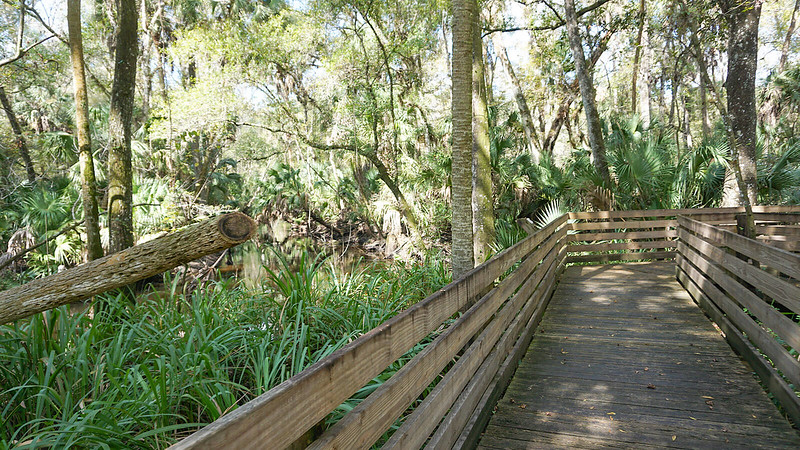Curve in boardwalk with river view