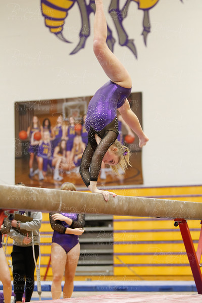 2019-01-08 Gymnastics vs Wawasee