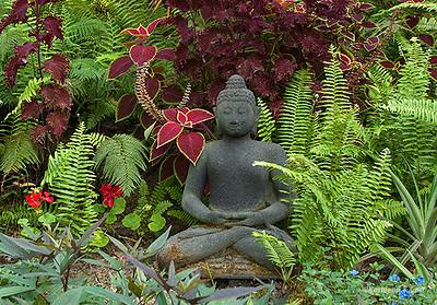 Buddha in garden_2703.jpg