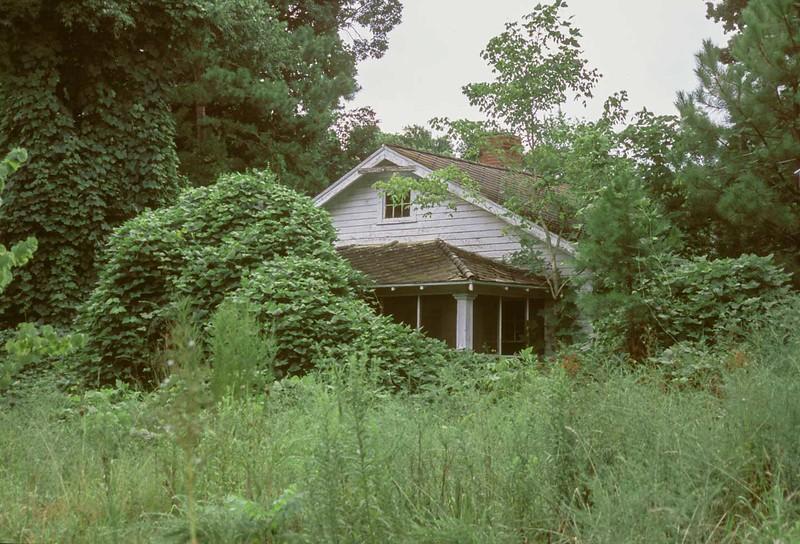 house1-tate.jpg