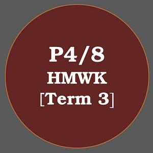 P4/8 HMWK T3