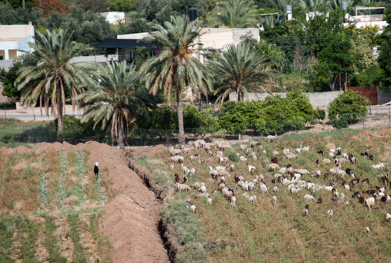 Israel_1160.jpg