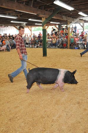 LC Fair 2013-Tuesday