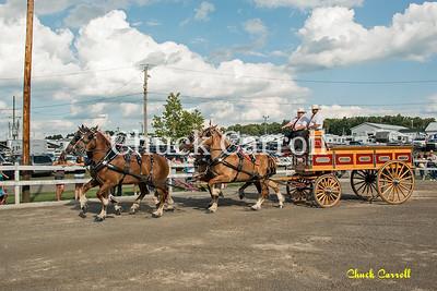 Draft Horse Show - Grange Fair Friday 8-23-2013