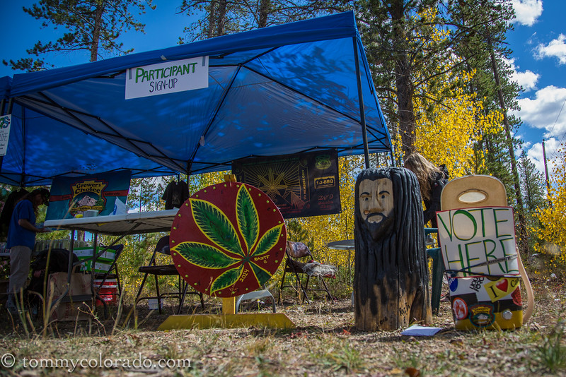 cannabiscup_tomfricke_160917-2218.jpg