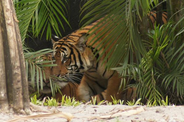 pb zoo 11 10 2012