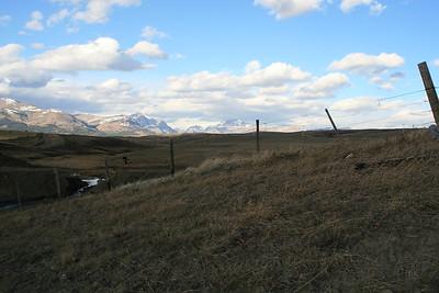 Rising Wolf - Montana