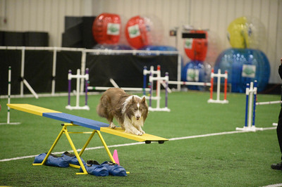 Gloucester County Kennel Club AKC Agility Trial April 9-10