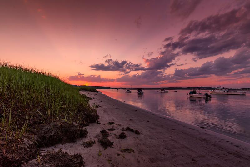 Pine Point Marsh Grass at Sunset.jpg