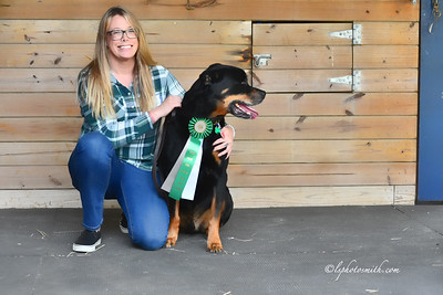 Farm Dog PM