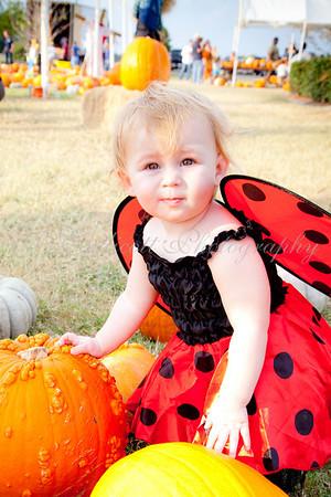 Tatum in the Pumpkin Patch