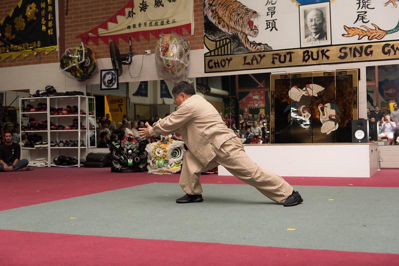 Shaolin-88.jpg