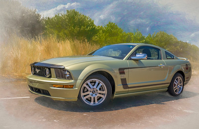 Custom Shoot Ford Mustang