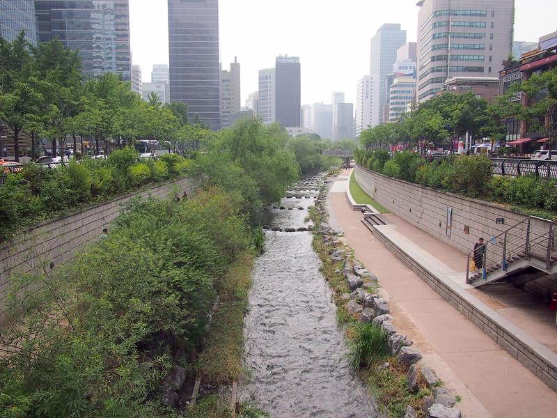 P6283945-cheonggyecheon-stream-grenery.JPG