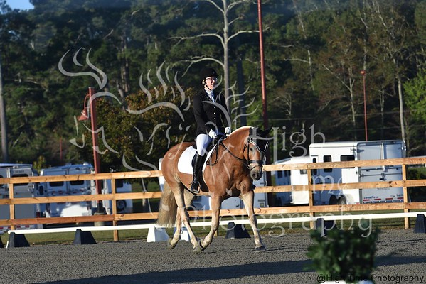2017 Region 1 Dressage Championships and Harvest Moon Show
