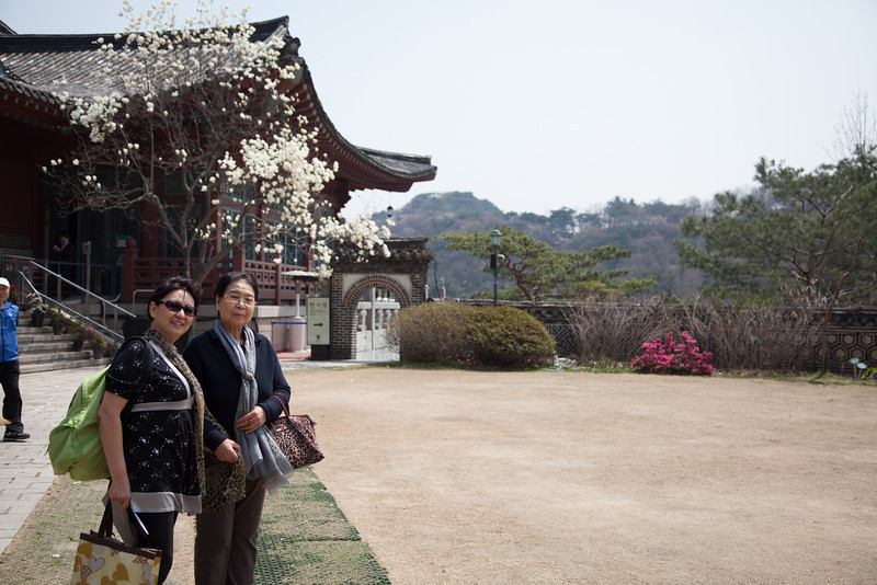 Outside of Samcheonggak Restaurant which is on the back side of a mountain backing up to the Blue House (South Korea's version of the U.S. White House).